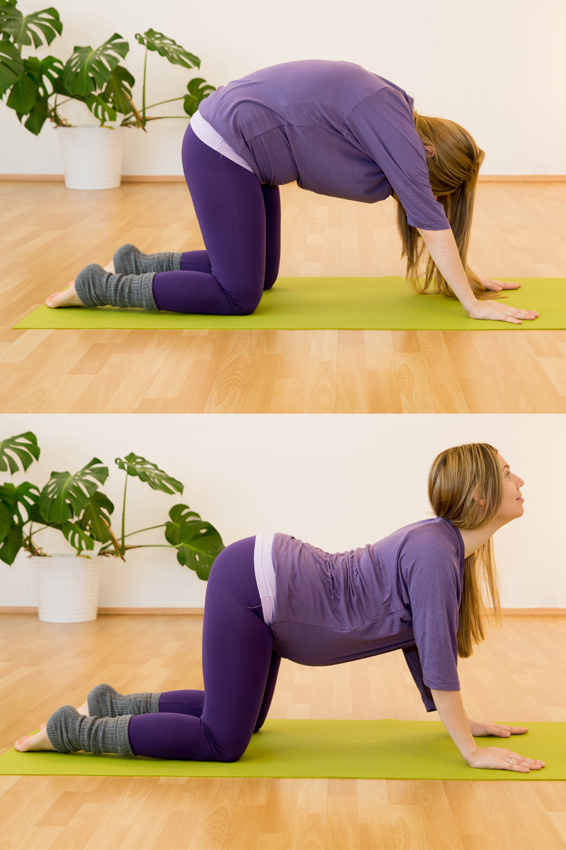 Yogastellungen gegen Rückenschmerzen Die Katze & die Kuh