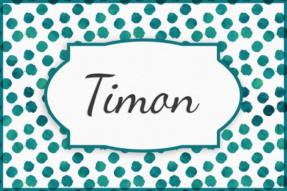 Seltene Jungennamen Timon