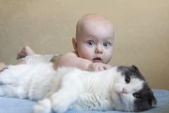 Baby und Katze: Das geht!