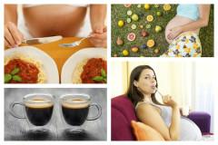 20 Ernährungsfragen