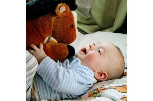 Die schönsten Kinderfotos 2012