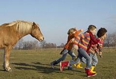 Betreute Kinderferien auf dem Ponyhof