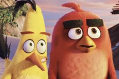 Trailer: Angry Birds - Der Film
