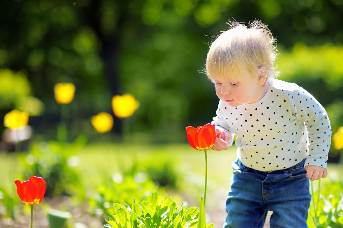 Kind mit Tulpe