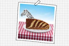 Rezept für Zebrakuchen