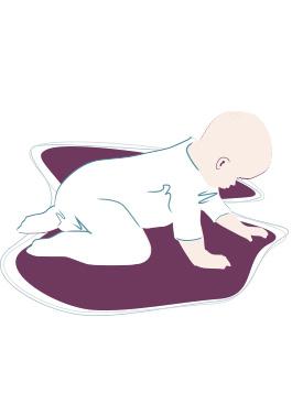 Baby-Entwicklung: 8. Monat