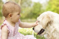 Tipps für die Kombi Baby und Hund