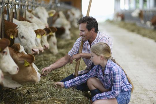 Ausflüge mit Kindern: Bauernhof