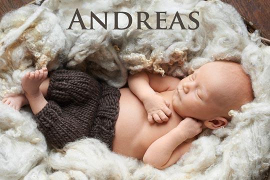Andreas: Aus der Bibel