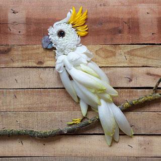 Tiere aus Blättern basteln: Kakadu