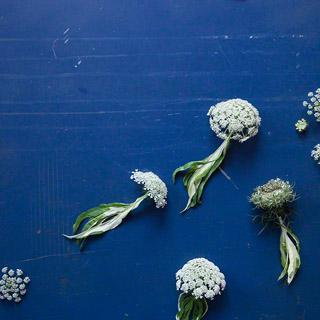 Tiere aus Blättern basteln: Qualle