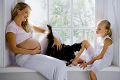 Toxoplasmose in der Schwangerschaft