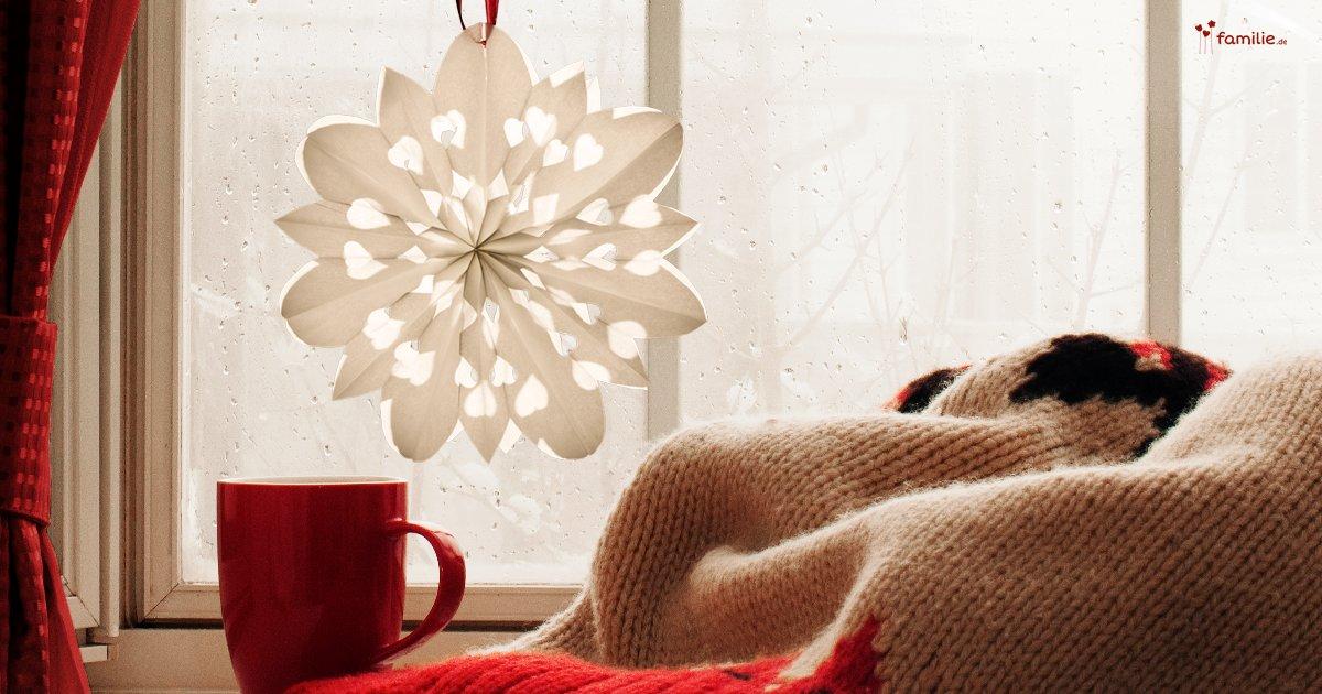 Weihnachtssterne Aus Brotzeittüten Familiede