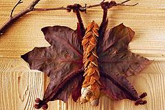 Fledermaus aus Naturmaterialien basteln