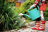 Gartenarbeit Juni Juli