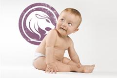 Geburtshoroskop Löwe