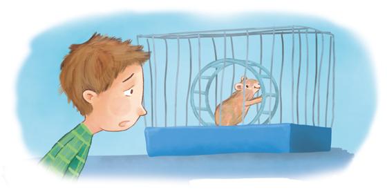 Vorlesegeschichte Hamster