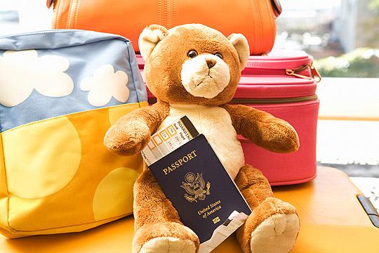 Teddybär mit Reisepass