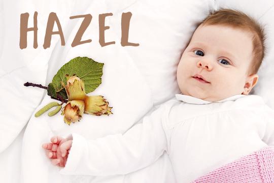 Blumige Mädchennamen: Hazel