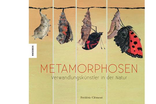 Buchempfehlung: Metamorphosen