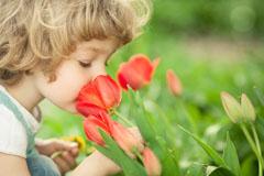 Mit Kindern die Natur entdecken: Auf in den Frühling!