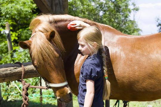 Pony-Party mit Kindern feiern
