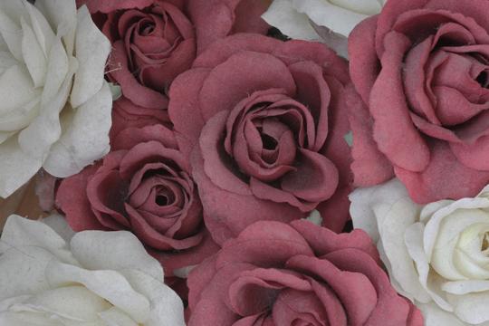 Promi-KIndernamen: Dusty Rose