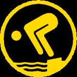 Schwimmabzeichen Gold