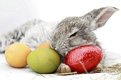 Wie feiern Sie Ostern?