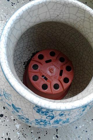 Der Trick mit dem Gießwasser