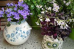 Balkon-Deko: Alte Vasen mit neuem Sinn