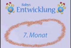 Wie entwickelt sich mein Baby im 7. Monat?