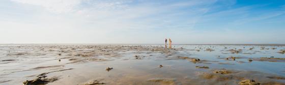Weites Wattenmeer bei Ebbe vor der Insel Foehr