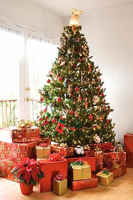 Weihnachtsgedichte: Christbaum