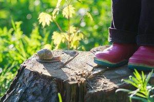 Alltag im Waldkindergarten: Keine Berührungsängste mit Mutter Natur.