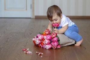 Ein kleines Kind knabbert an Tulpen